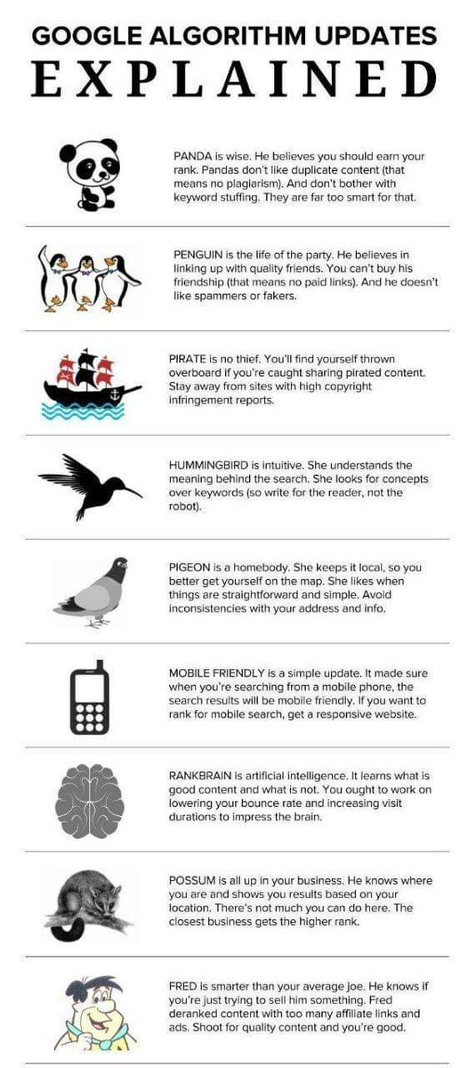 Infographic explaining the major Google algorithms updates namely Panda, Penguin, Pirate, Hummingbird, Pigeon, Mobile, Rankbrain, Possum, and Fred.